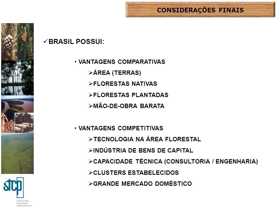 BRASIL POSSUI: CONSIDERAÇÕES FINAIS VANTAGENS COMPARATIVAS