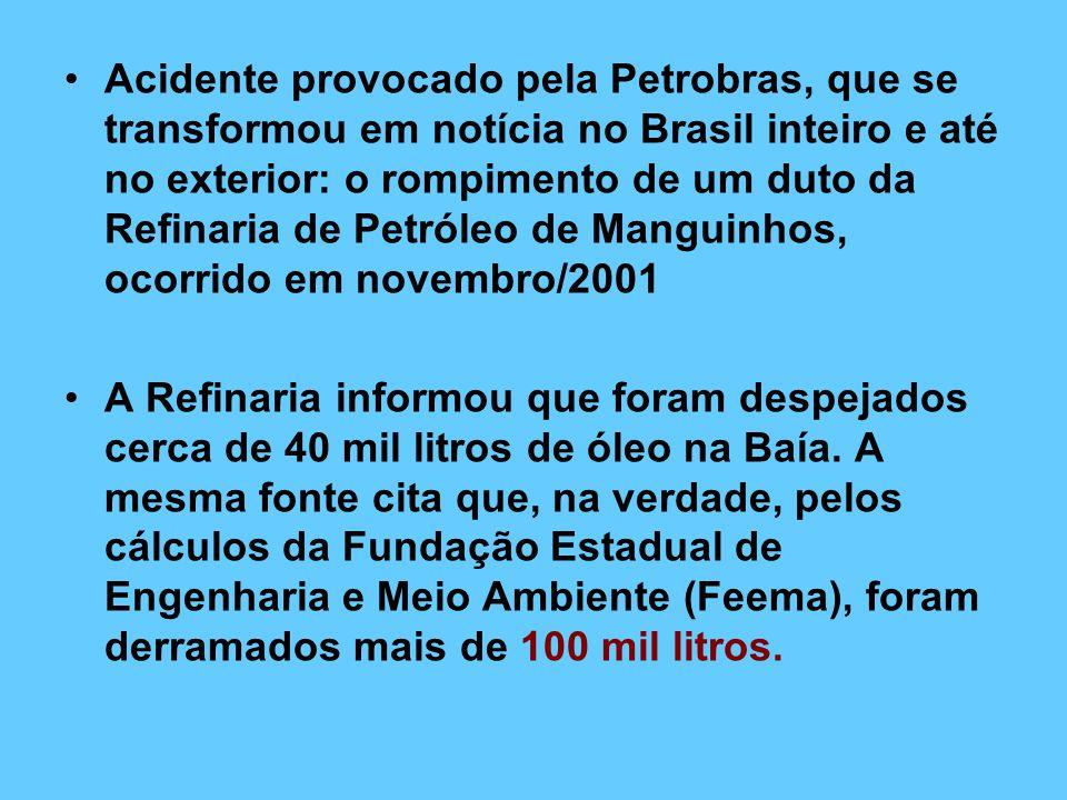 Acidente provocado pela Petrobras, que se transformou em notícia no Brasil inteiro e até no exterior: o rompimento de um duto da Refinaria de Petróleo de Manguinhos, ocorrido em novembro/2001
