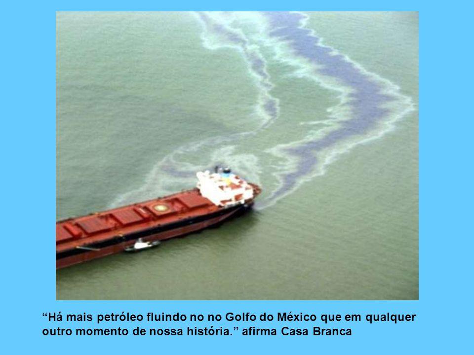 Há mais petróleo fluindo no no Golfo do México que em qualquer outro momento de nossa história. afirma Casa Branca