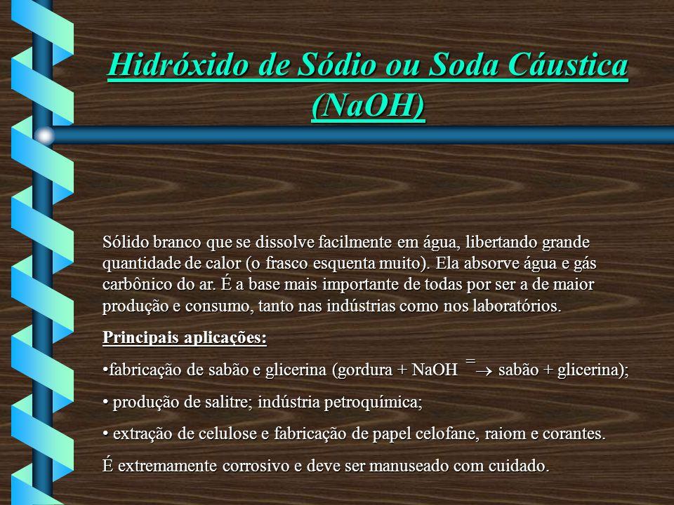 Hidróxido de Sódio ou Soda Cáustica (NaOH)