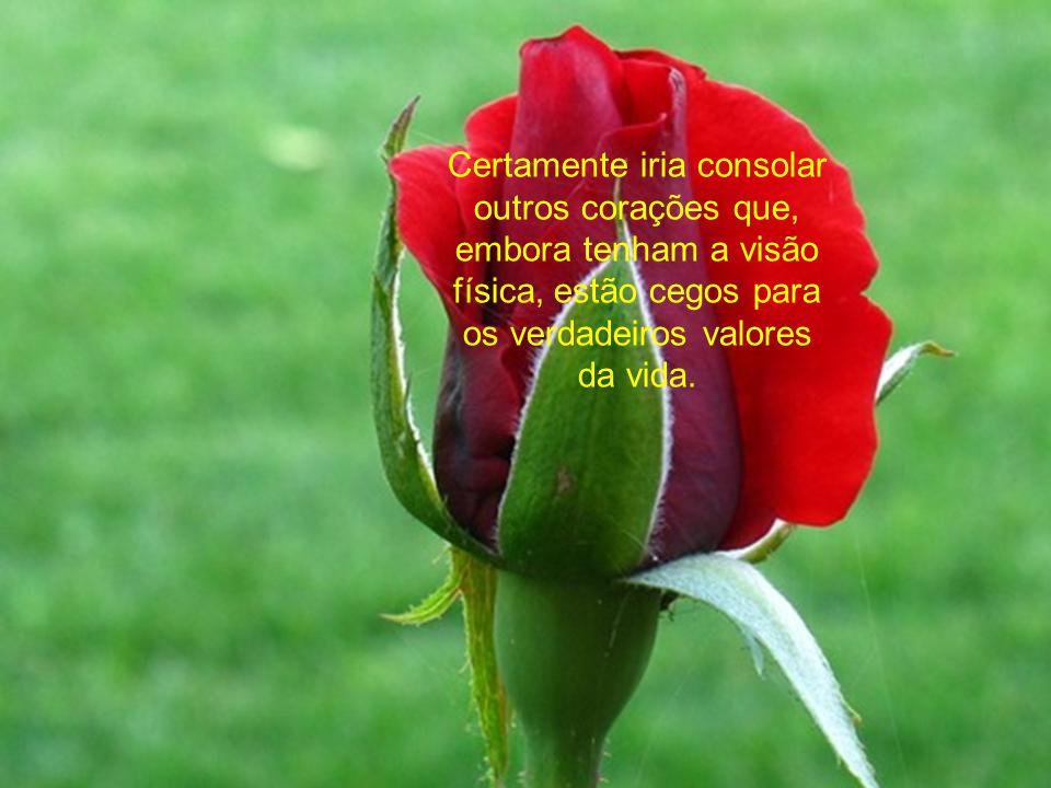 Certamente iria consolar outros corações que, embora tenham a visão física, estão cegos para os verdadeiros valores da vida.