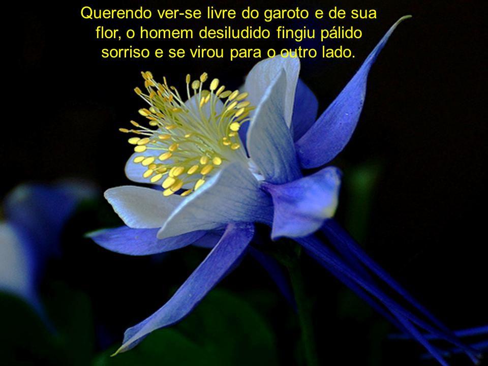 Querendo ver-se livre do garoto e de sua flor, o homem desiludido fingiu pálido sorriso e se virou para o outro lado.
