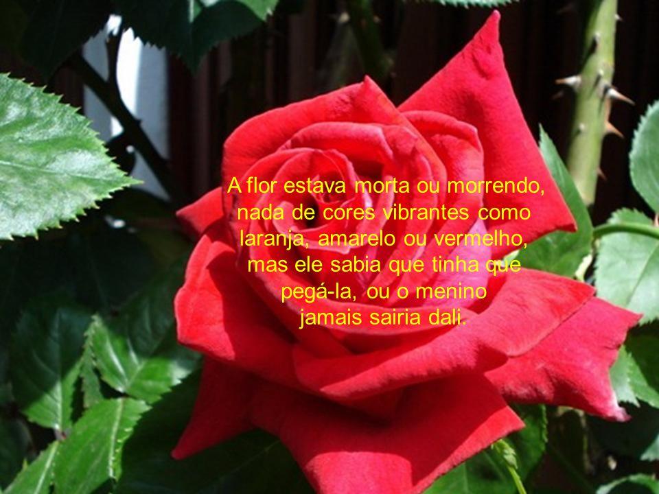 A flor estava morta ou morrendo, nada de cores vibrantes como laranja, amarelo ou vermelho, mas ele sabia que tinha que pegá-la, ou o menino jamais sairia dali.
