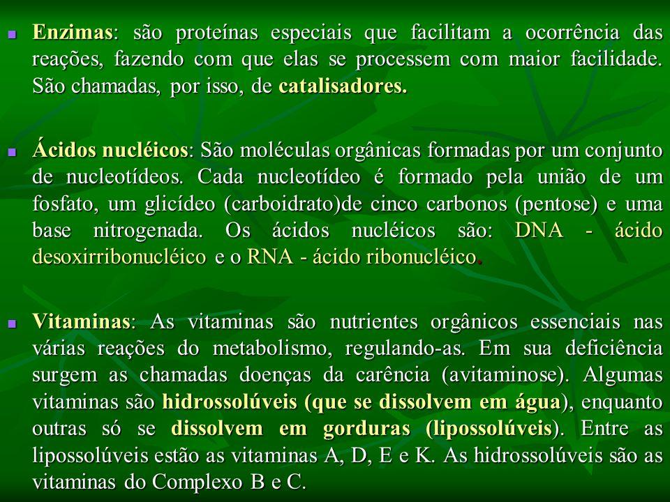 Enzimas: são proteínas especiais que facilitam a ocorrência das reações, fazendo com que elas se processem com maior facilidade. São chamadas, por isso, de catalisadores.