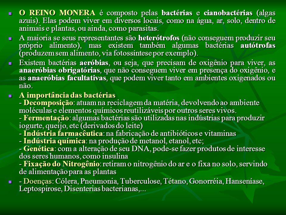 O REINO MONERA é composto pelas bactérias e cianobactérias (algas azuis). Elas podem viver em diversos locais, como na água, ar, solo, dentro de animais e plantas, ou ainda, como parasitas.