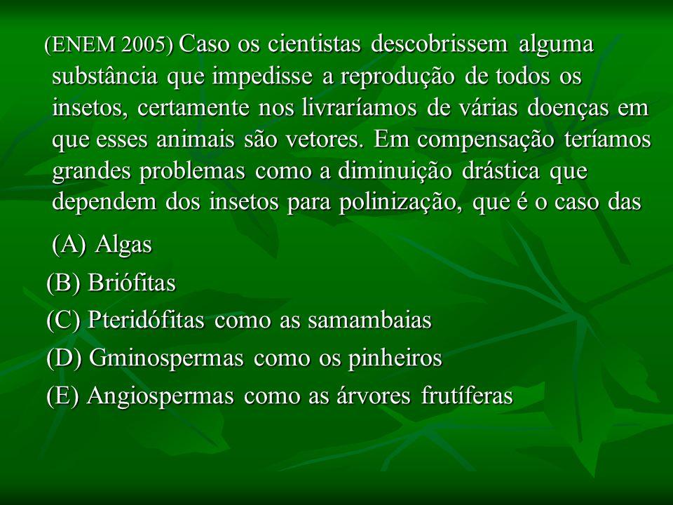 (ENEM 2005) Caso os cientistas descobrissem alguma substância que impedisse a reprodução de todos os insetos, certamente nos livraríamos de várias doenças em que esses animais são vetores. Em compensação teríamos grandes problemas como a diminuição drástica que dependem dos insetos para polinização, que é o caso das