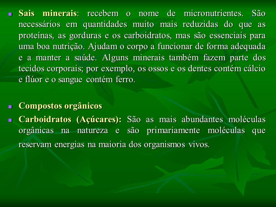 Sais minerais: recebem o nome de micronutrientes