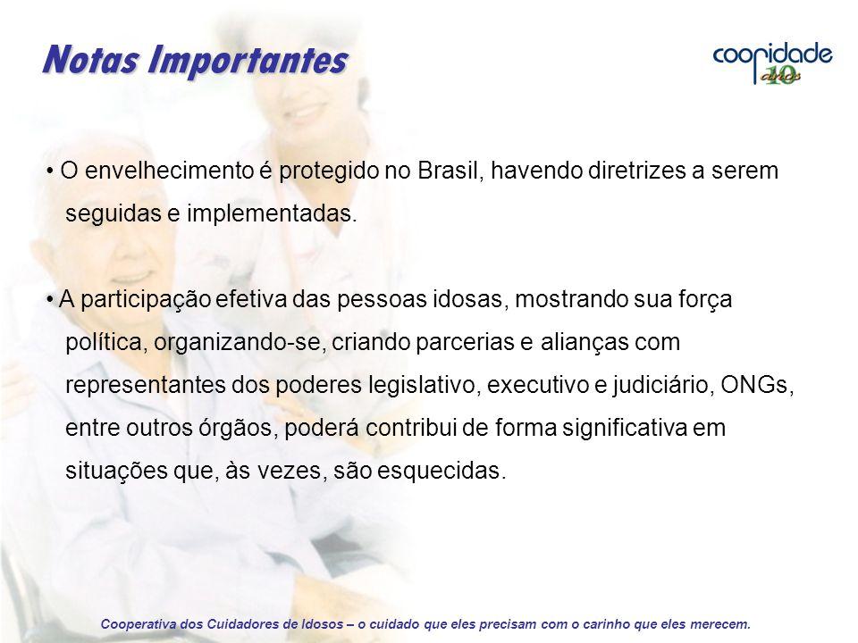 Notas Importantes O envelhecimento é protegido no Brasil, havendo diretrizes a serem. seguidas e implementadas.