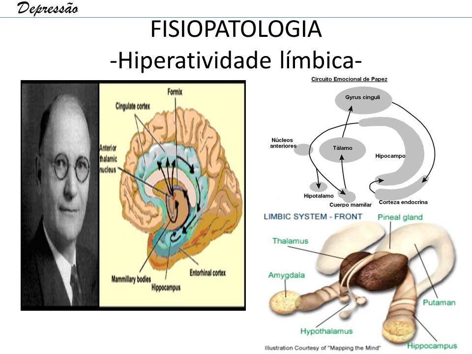 FISIOPATOLOGIA -Hiperatividade límbica-