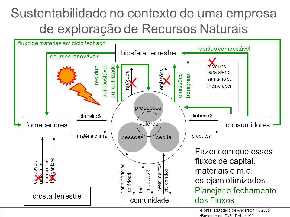 Sustentabilidade no contexto de uma empresa de exploração de Recursos Naturais