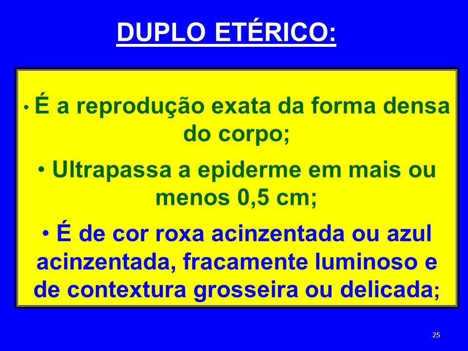 DUPLO ETÉRICO: Ultrapassa a epiderme em mais ou menos 0,5 cm;