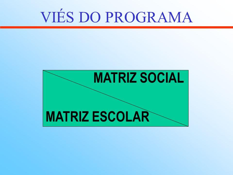 VIÉS DO PROGRAMA MATRIZ SOCIAL MATRIZ ESCOLAR