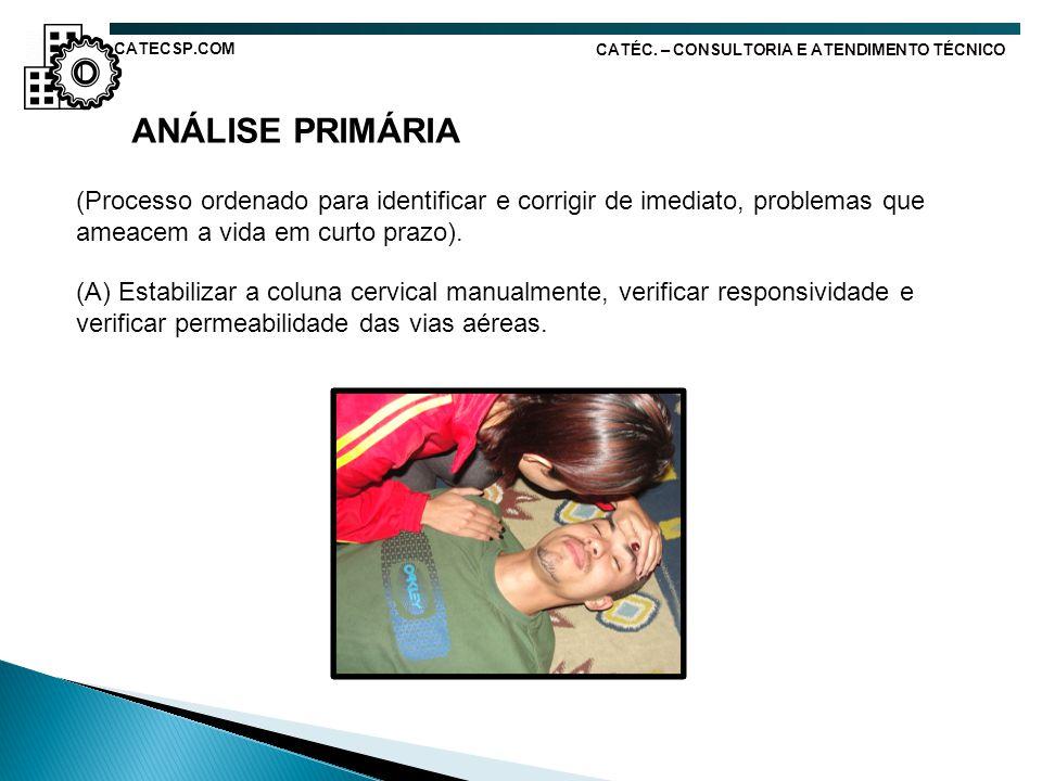CATECSP.COM CATÉC. – CONSULTORIA E ATENDIMENTO TÉCNICO. ANÁLISE PRIMÁRIA.