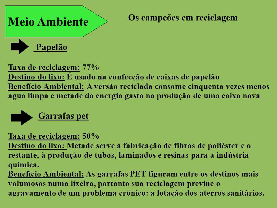 Meio Ambiente Os campeões em reciclagem Papelão Garrafas pet