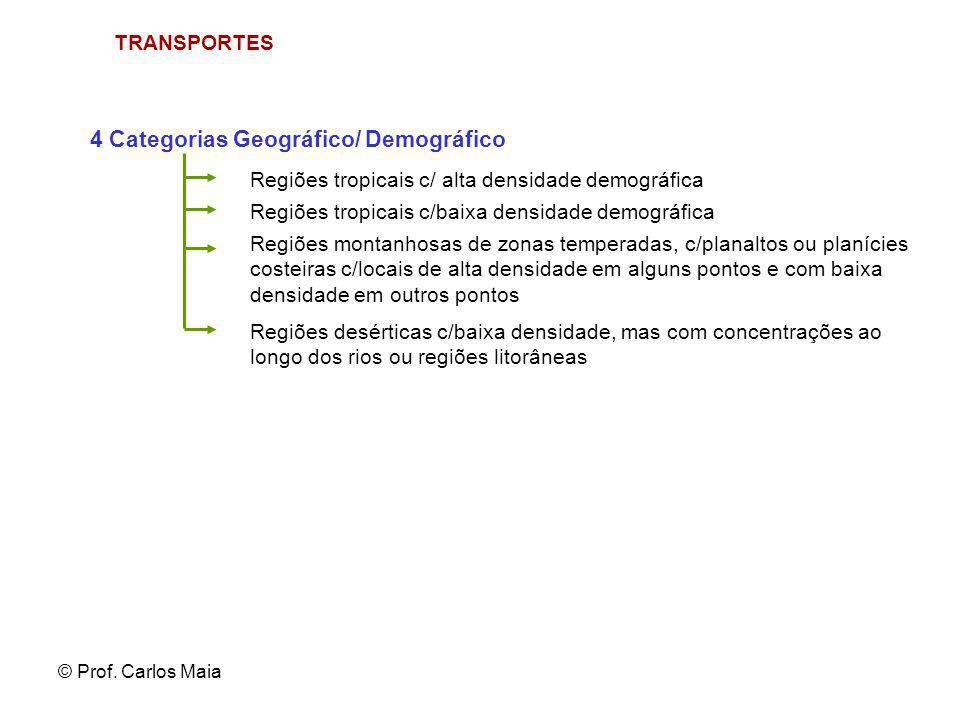 4 Categorias Geográfico/ Demográfico
