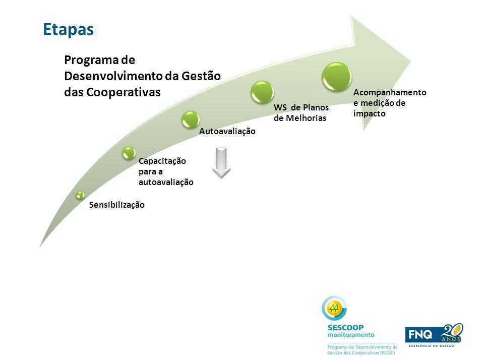 Etapas Programa de Desenvolvimento da Gestão das Cooperativas