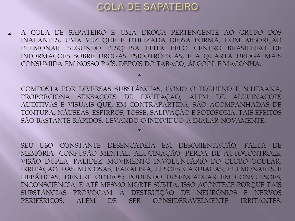 COLA DE SAPATEIRO