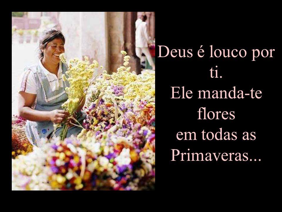 Deus é louco por ti. Ele manda-te flores em todas as Primaveras...