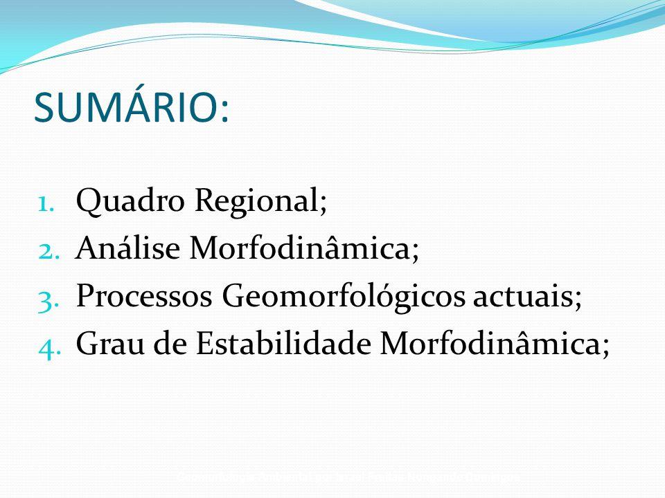 SUMÁRIO: Quadro Regional; Análise Morfodinâmica;
