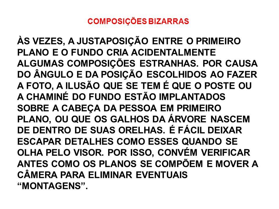 COMPOSIÇÕES BIZARRAS