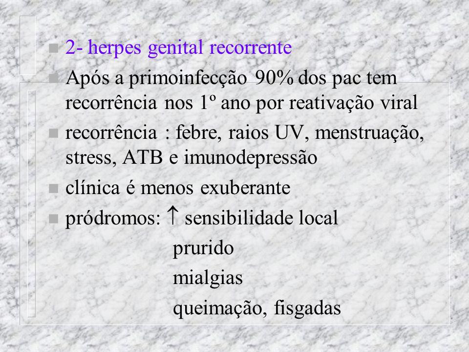 2- herpes genital recorrente