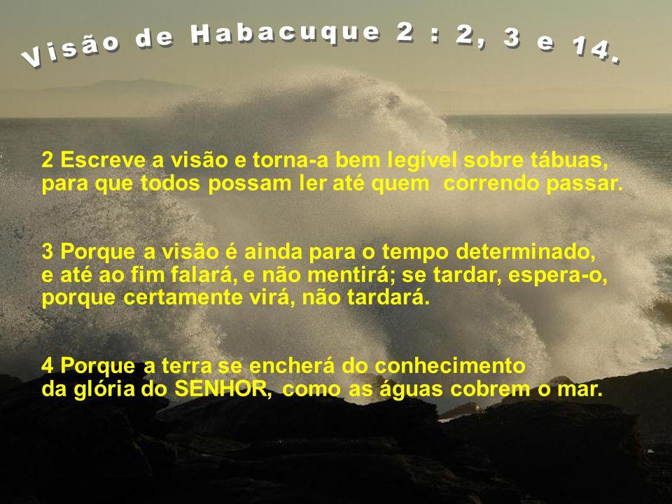 Visão de Habacuque 2 : 2, 3 e 14. 2 Escreve a visão e torna-a bem legível sobre tábuas, para que todos possam ler até quem correndo passar.
