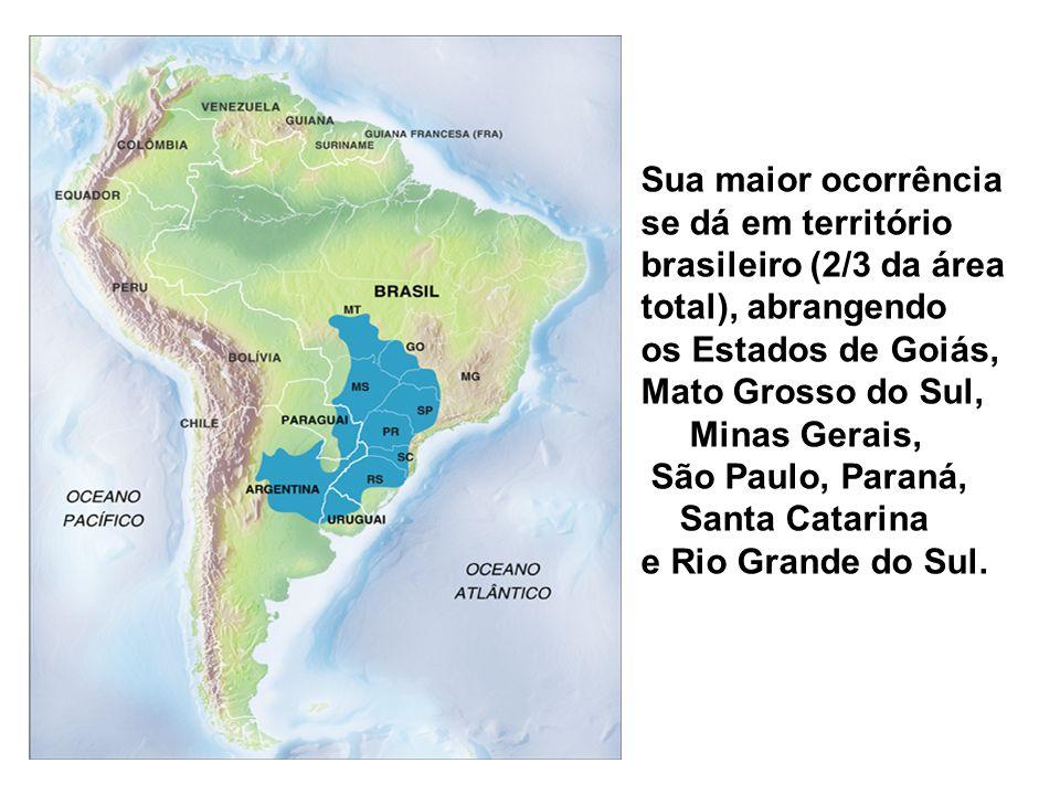 Sua maior ocorrência se dá em território brasileiro (2/3 da área total), abrangendo