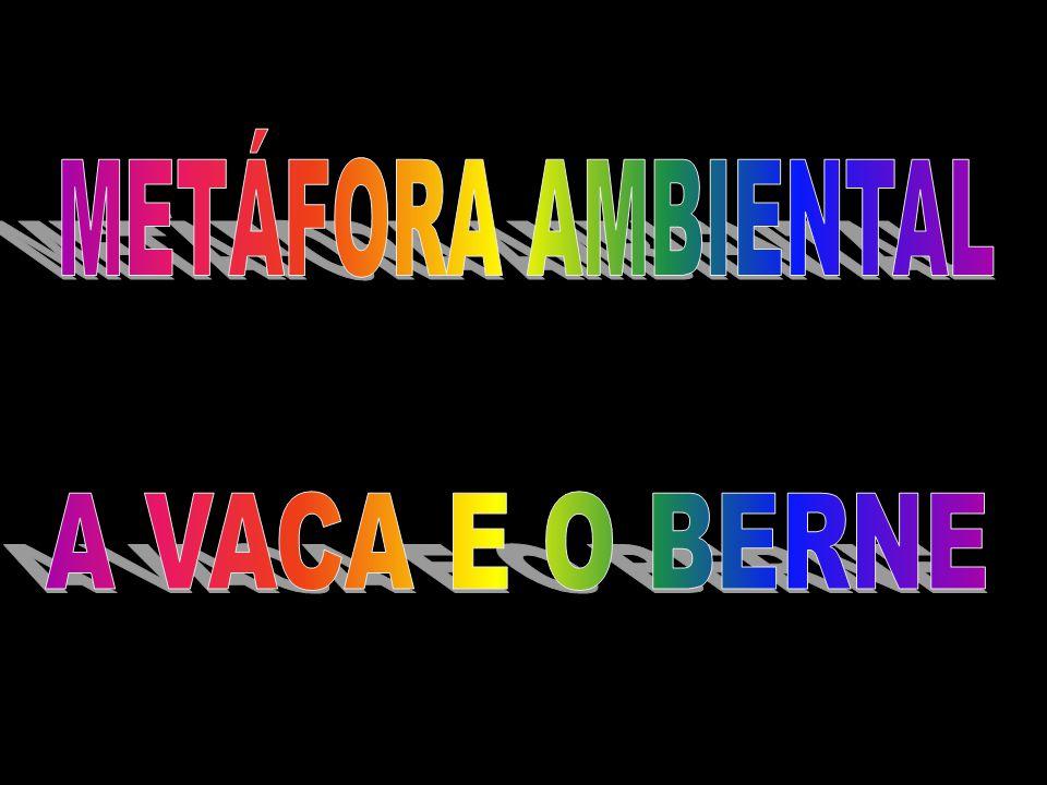 METÁFORA AMBIENTAL A VACA E O BERNE