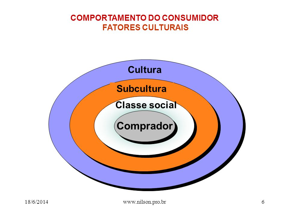 COMPORTAMENTO DO CONSUMIDOR FATORES CULTURAIS
