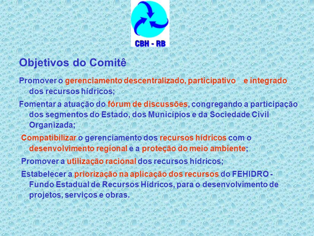 Objetivos do Comitê Promover o gerenciamento descentralizado, participativo e integrado dos recursos hídricos;