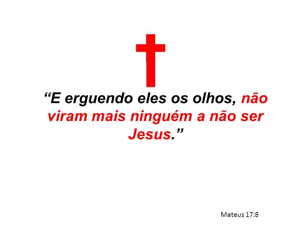 E erguendo eles os olhos, não viram mais ninguém a não ser Jesus.