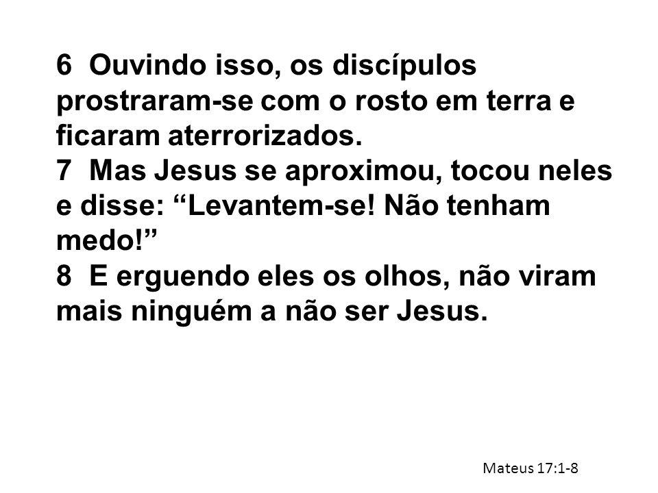 8 E erguendo eles os olhos, não viram mais ninguém a não ser Jesus.