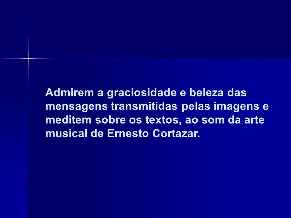 Admirem a graciosidade e beleza das mensagens transmitidas pelas imagens e meditem sobre os textos, ao som da arte musical de Ernesto Cortazar.