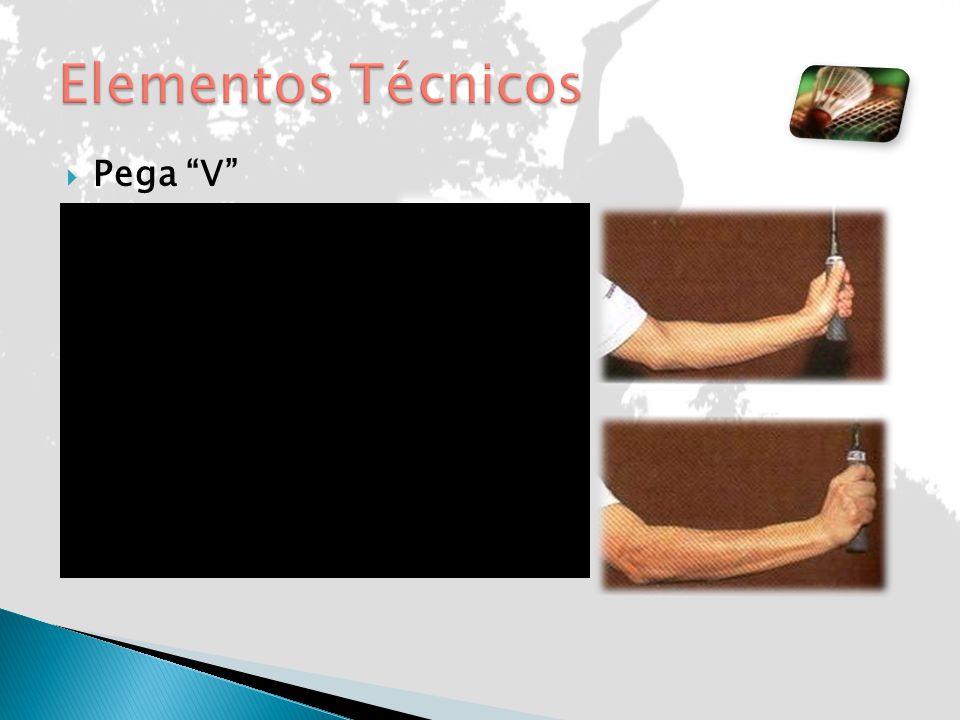Elementos Técnicos Pega V