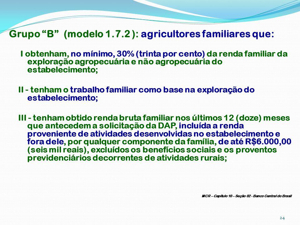 Grupo B (modelo 1.7.2 ): agricultores familiares que: