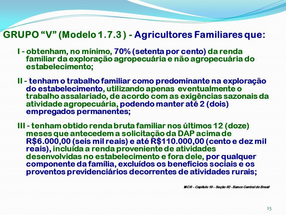 GRUPO V (Modelo 1.7.3 ) - Agricultores Familiares que: