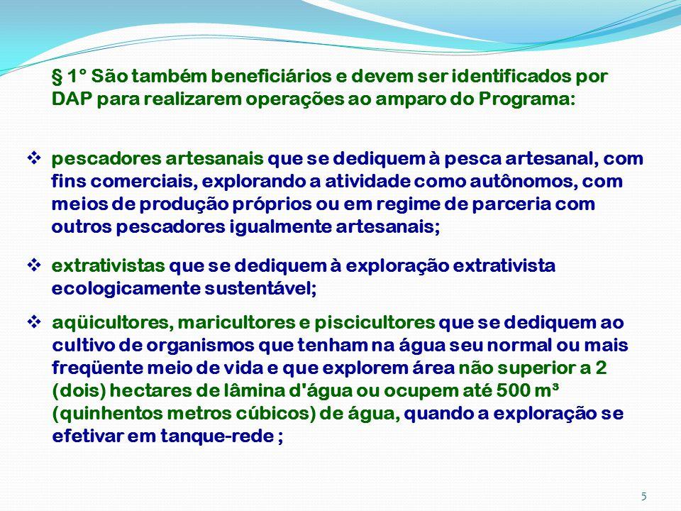 § 1° São também beneficiários e devem ser identificados por DAP para realizarem operações ao amparo do Programa: