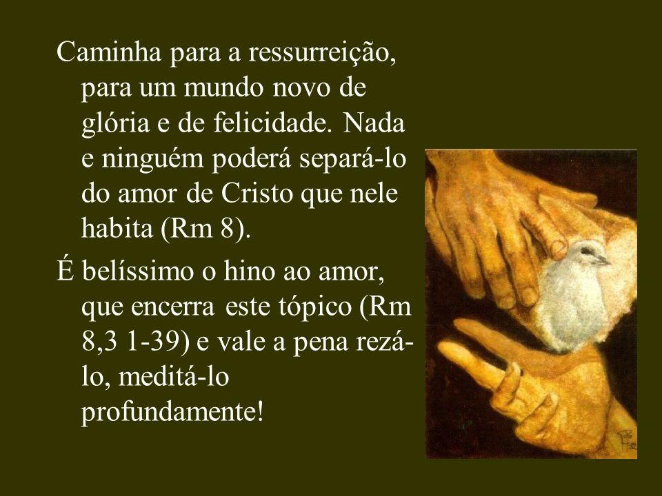 Caminha para a ressurreição, para um mundo novo de glória e de felicidade. Nada e ninguém poderá separá-lo do amor de Cristo que nele habita (Rm 8).