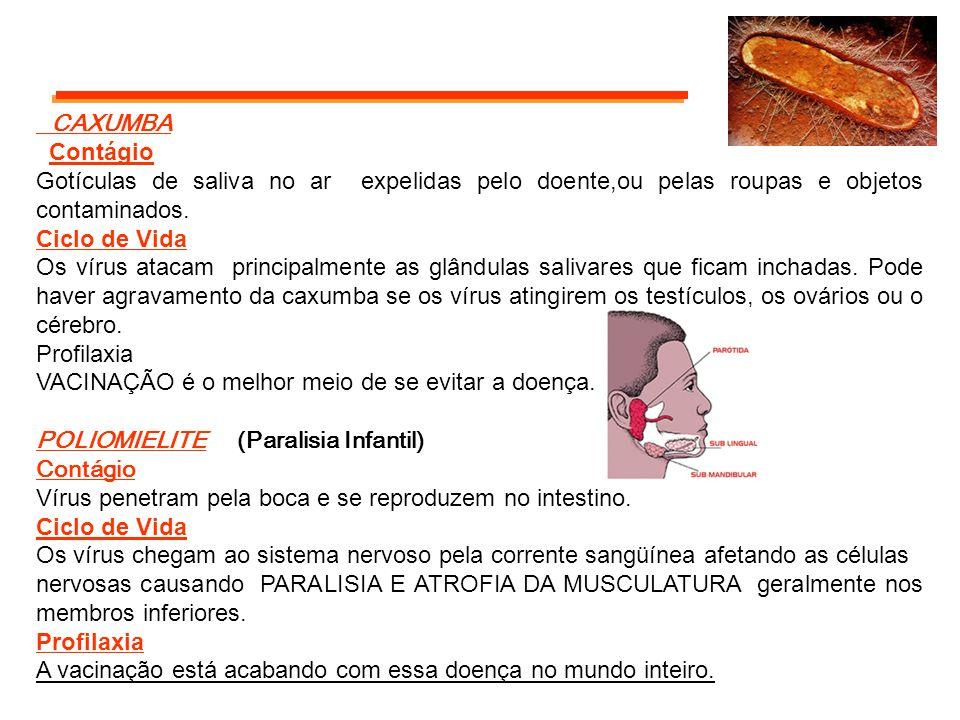 CAXUMBA Contágio. Gotículas de saliva no ar expelidas pelo doente,ou pelas roupas e objetos contaminados.