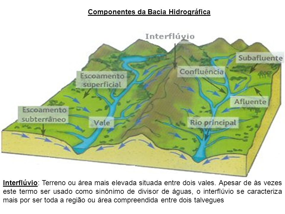Componentes da Bacia Hidrográfica