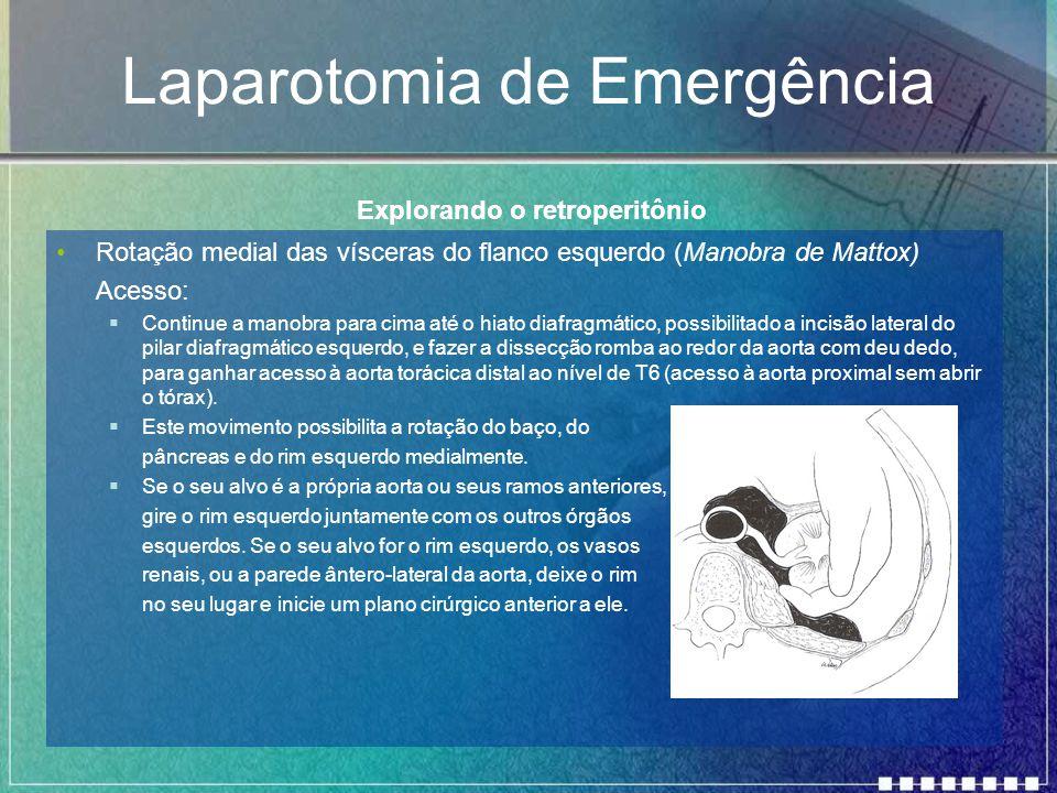 Laparotomia de Emergência