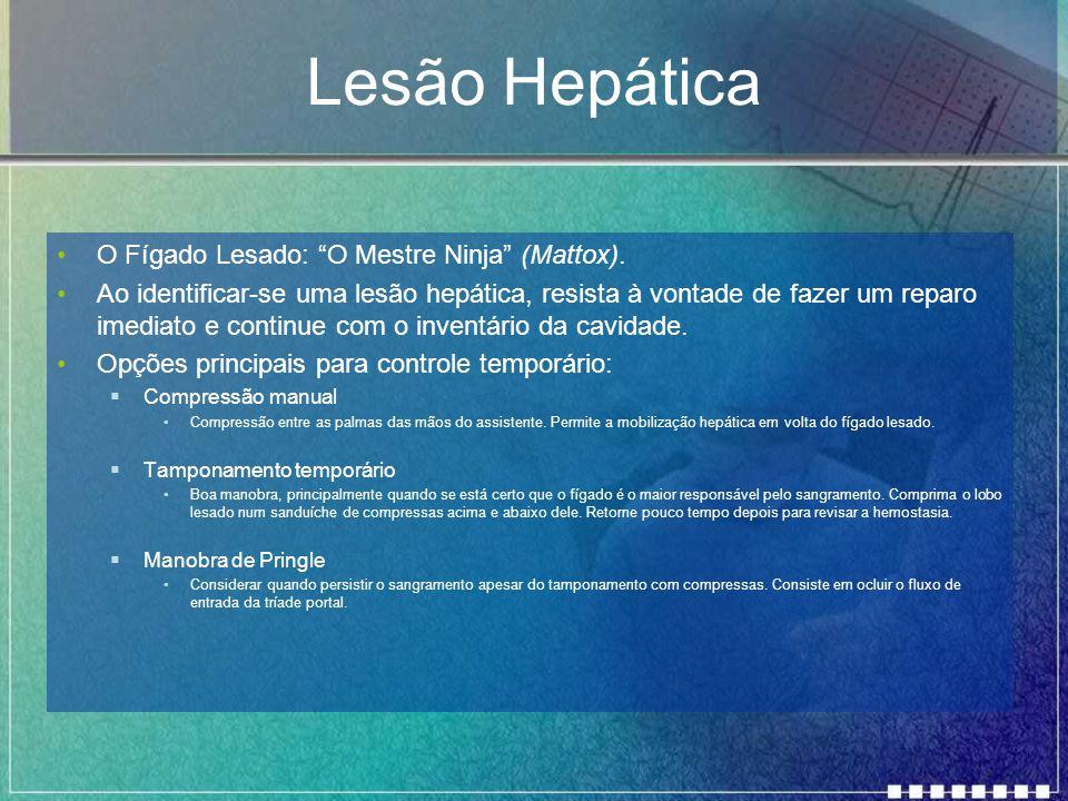 Lesão Hepática O Fígado Lesado: O Mestre Ninja (Mattox).