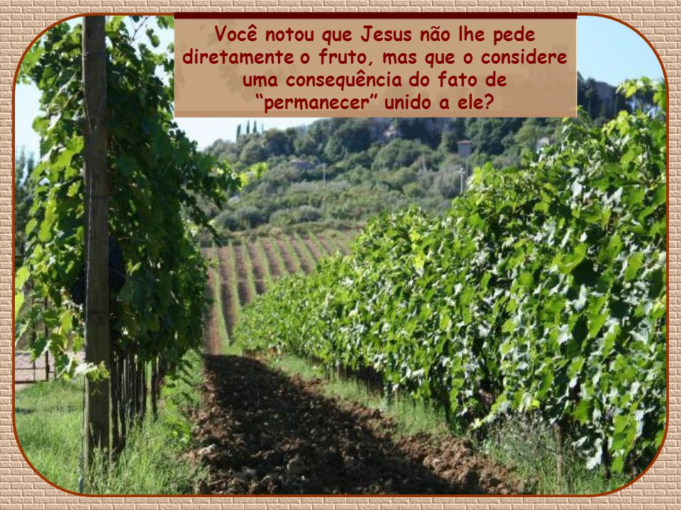 Você notou que Jesus não lhe pede diretamente o fruto, mas que o considere uma consequência do fato de permanecer unido a ele