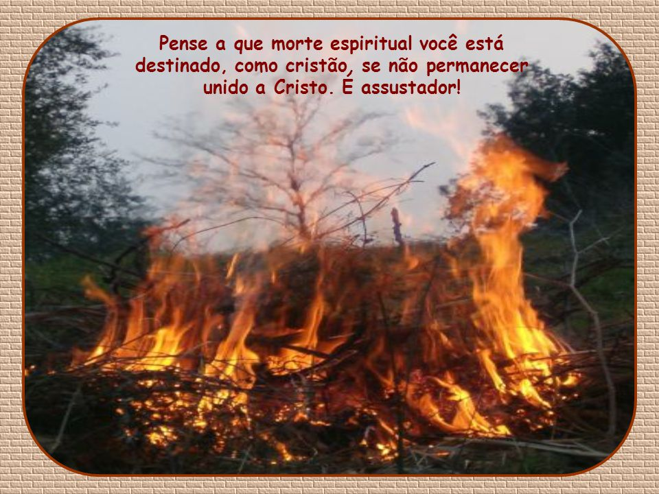 Pense a que morte espiritual você está destinado, como cristão, se não permanecer unido a Cristo.