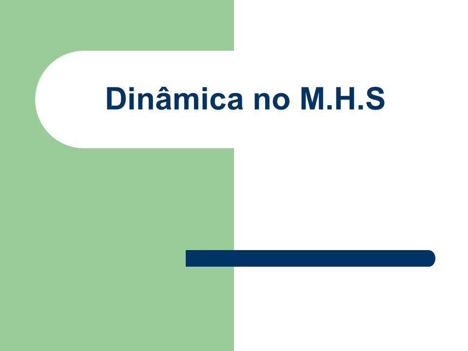 Dinâmica no M.H.S