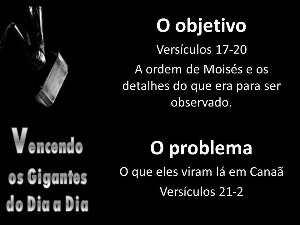O objetivo O problema Versículos 17-20