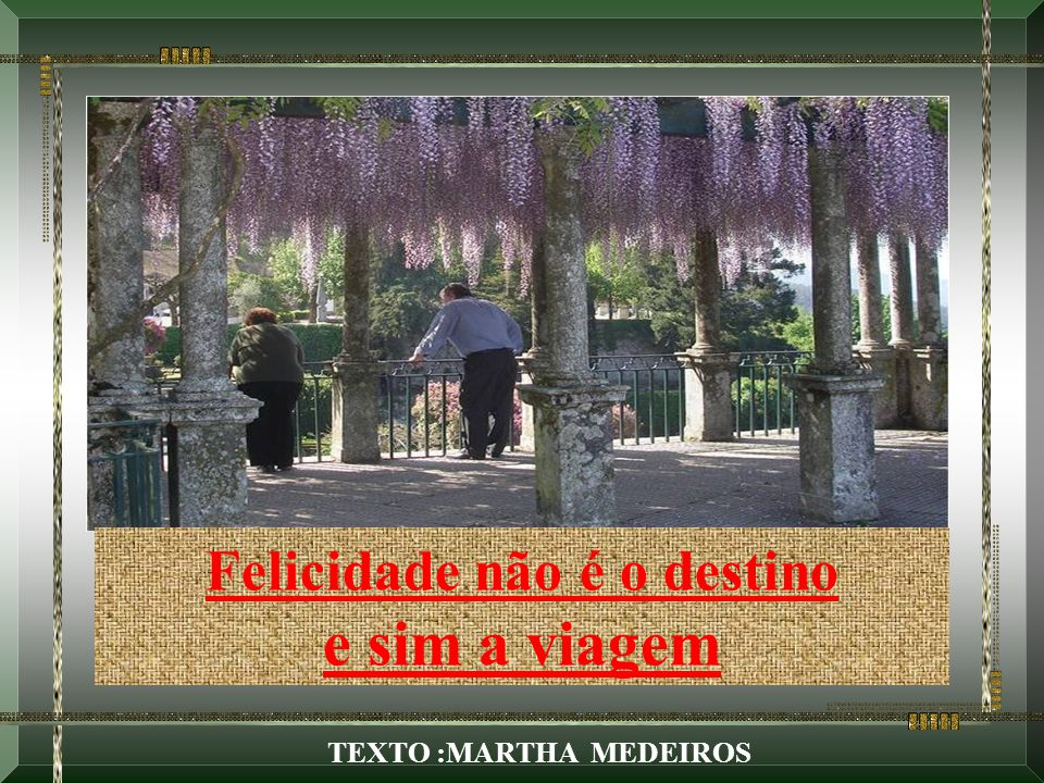 Felicidade não é o destino TEXTO :MARTHA MEDEIROS