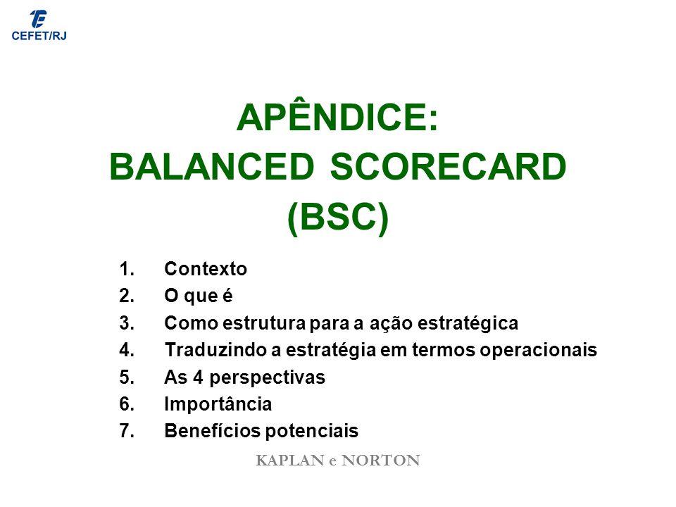 APÊNDICE: BALANCED SCORECARD (BSC)