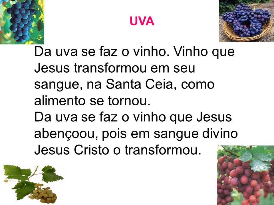 UVA Da uva se faz o vinho. Vinho que Jesus transformou em seu sangue, na Santa Ceia, como alimento se tornou.