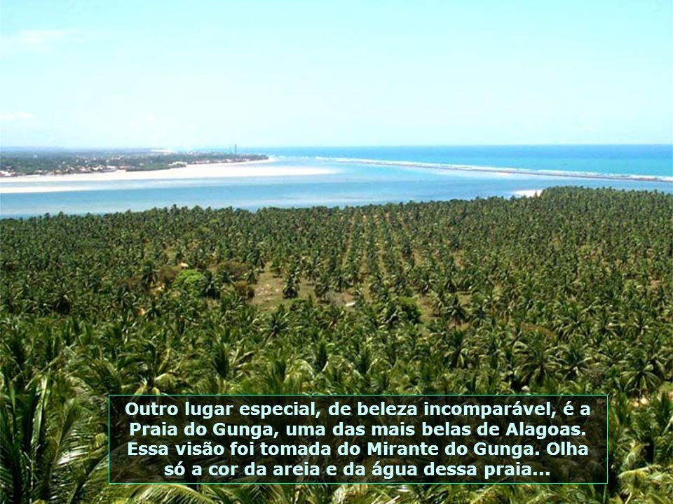 P0008236 - BARRA DE SÃO MIGUEL - MIRANTE DO GUNGA